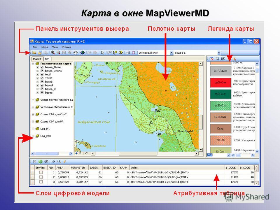 Карта в окне MapViewerMD