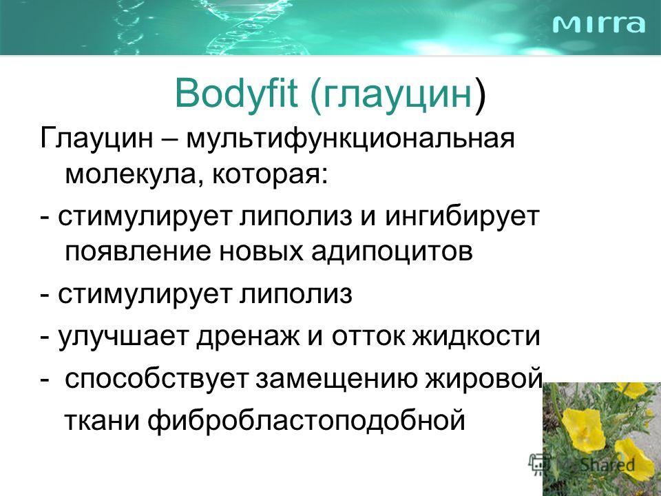 Bodyfit (глауцин) Глауцин – мультифункциональная молекула, которая: - стимулирует липолиз и ингибирует появление новых адипоцитов - стимулирует липолиз - улучшает дренаж и отток жидкости -способствует замещению жировой ткани фибробластоподобной