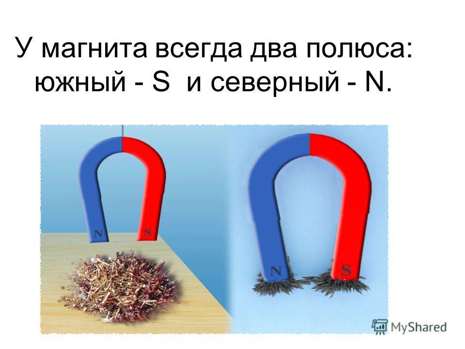 У магнита всегда два полюса: южный - S и северный - N.
