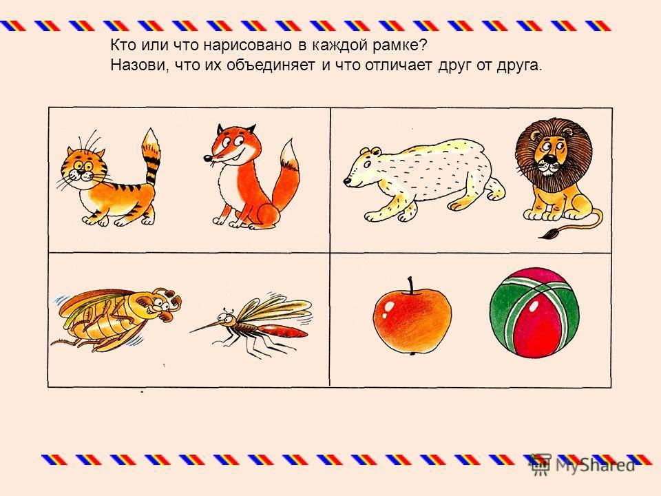 Кто или что нарисовано в каждой рамке? Назови, что их объединяет и что отличает друг от друга.