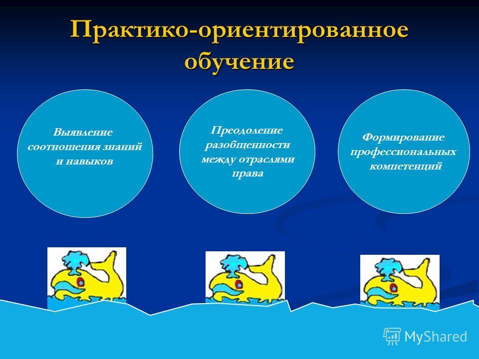 Практико-ориентированное обучение Выявление соотношения знаний и навыков Преодоление разобщенности между отраслями права Формирование профессиональных компетенций