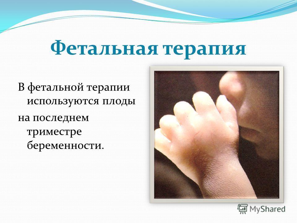 Фетальная терапия В фетальной терапии используются плоды на последнем триместре беременности.