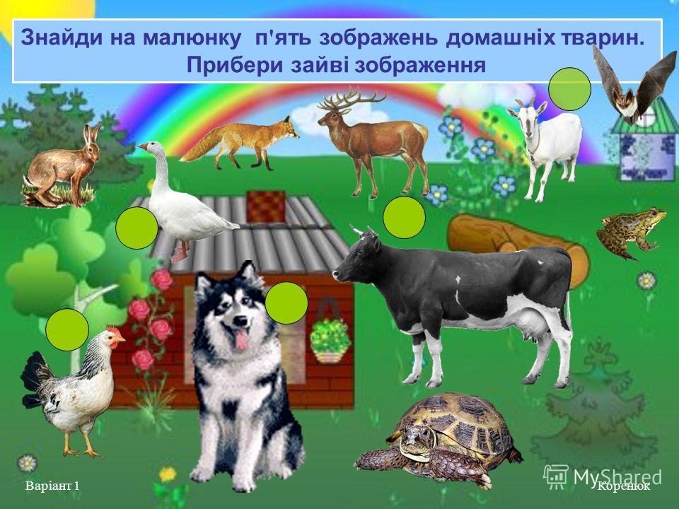 Знайди на малюнку п ' ять зображень домашніх тварин. Прибери зайві зображення Коренюк Варіант 1