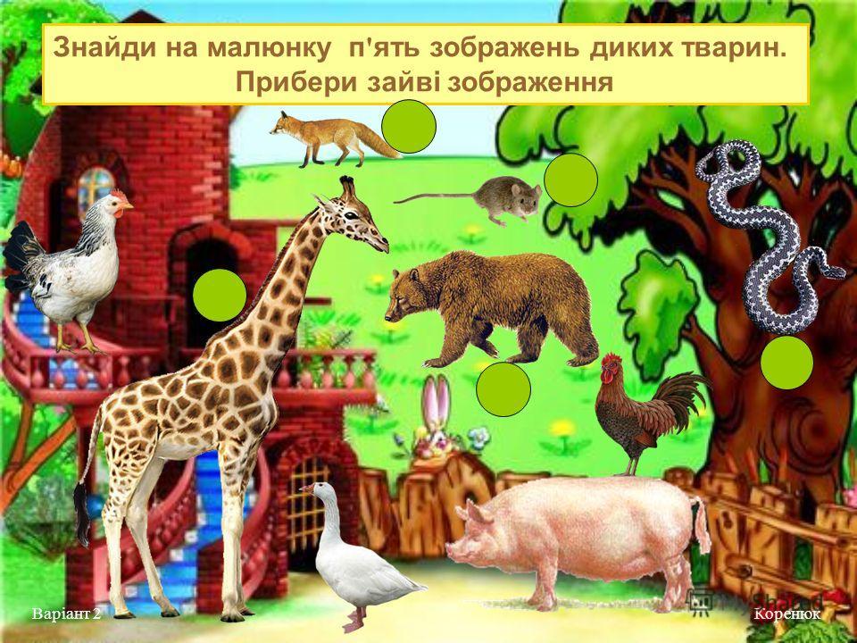 Знайди на малюнку п ' ять зображень диких тварин. Прибери зайві зображення Коренюк Варіант 2
