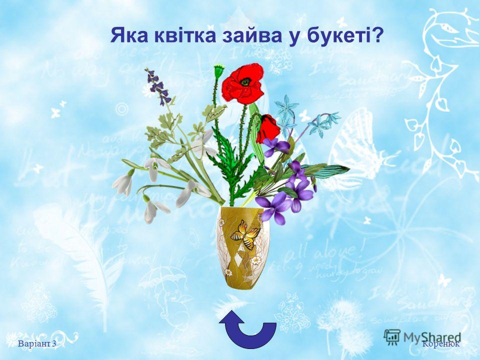 Яка квітка зайва у букеті? Коренюк Варіант 3