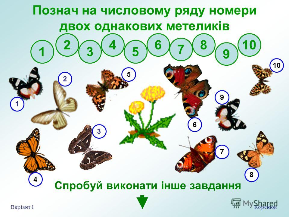 Коренюк Варіант 1 Познач на числовому ряду номери двух одинаковых метеликів 2 3 4 5 6 7 8 9 10 1 Спробуй виконати інше завдання 1 4 2 3 5 7 9 6 10 8