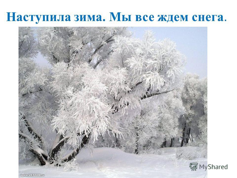 Наступила зима. Мы все ждем снега.