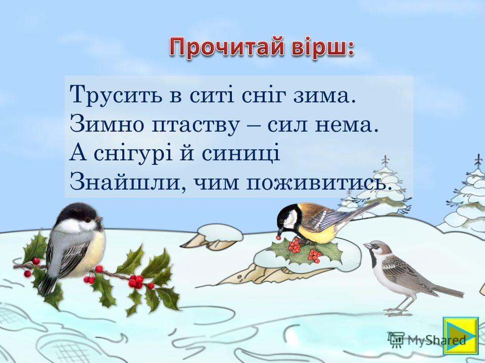 Трусить в ситі сніг зима. Зимно паству – сил нема. А снігурі й синиці Знайшли, чим поживитесь.