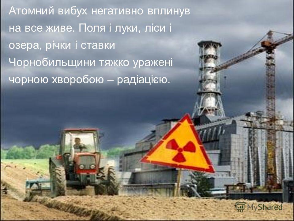 Атомний вибух негативно вплинув на все живое. Поля і луки, ліси і озера, річки і ставки Чорнобильщини тяжко уражені чорною хворобою – радіацією.