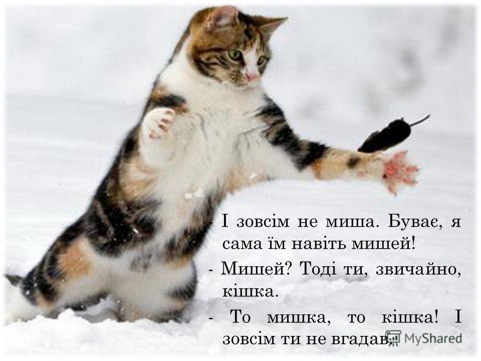 - І зовсім не миша. Буває, я сама їм навіть мишей! - Мишей? Тоді ты, звичайно, кішка. - То мишка, то кішка! І зовсім ты не гадав.