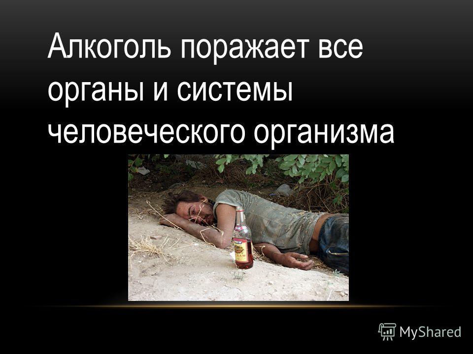 Алкоголь поражает все органы и системы человеческого организма