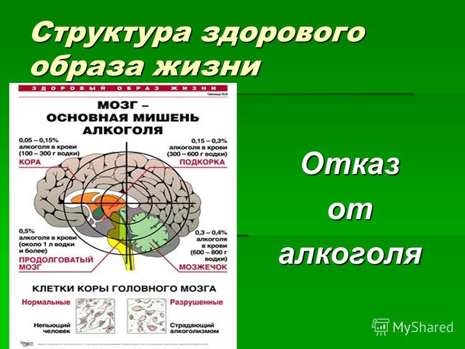 Структура здорового образа жизни Отказоталкоголя