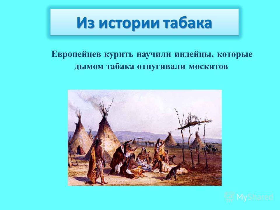 Европейцев курить научили индейцы, которые дымом табака отпугивали москитов Из истории табака