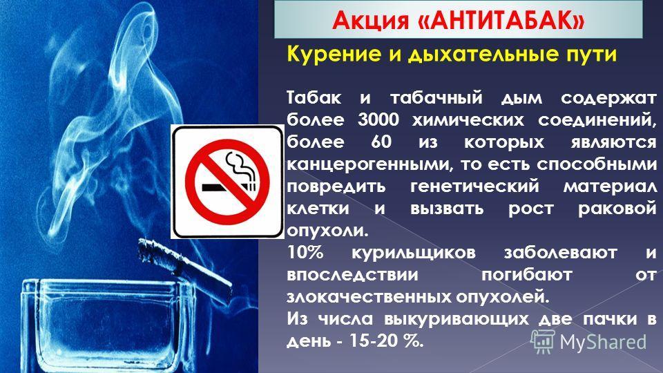 Курение и дыхательные пути Табак и табачный дым содержат более 3000 химических соединений, более 60 из которых являются канцерогенными, то есть способными повредить генетический материал клетки и вызвать рост раковой опухоли. 10% курильщиков заболева