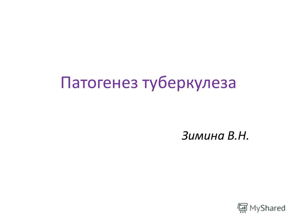 Патогенез туберкулеза Зимина В.Н.