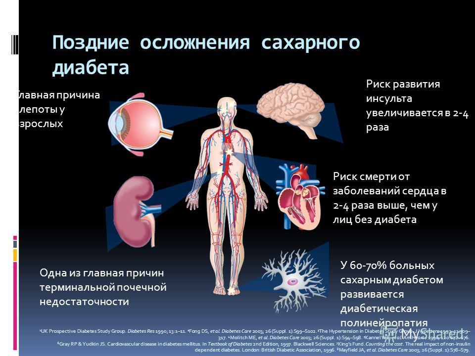 Поздние осложнения сахарного диабета Риск развития инсульта увеличивается в 2-4 раза Риск смерти от заболеваний сердца в 2-4 раза выше, чем у лиц без диабета Главная причина слепоты у взрослых Одна из главная причин терминальной почечной недостаточно