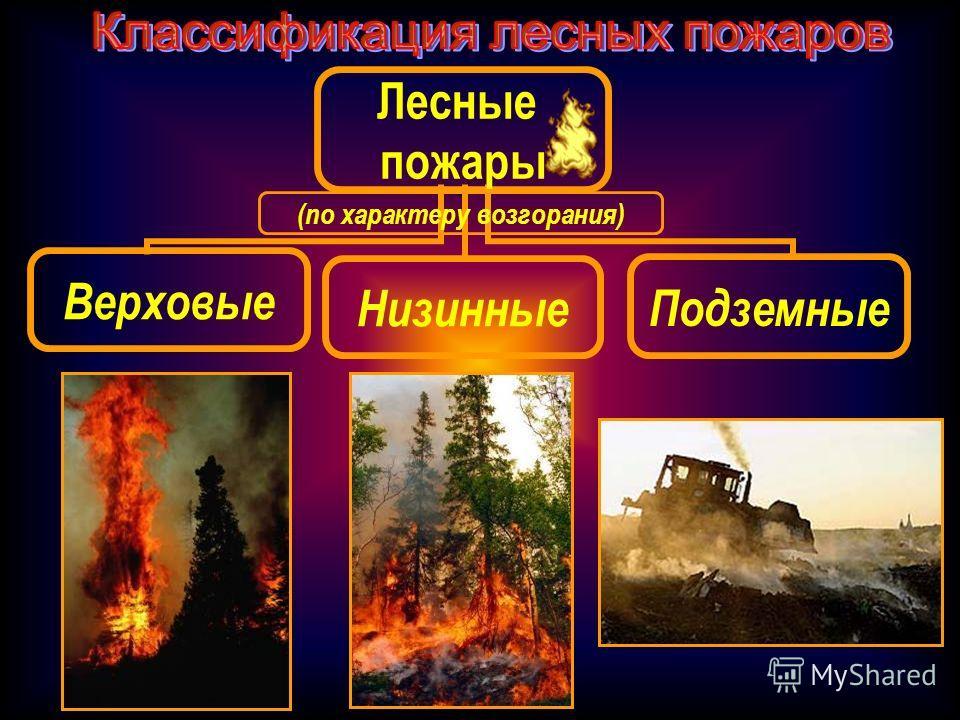 Лесные пожары Верховые НизинныеПодземные (по характеру возгорания)