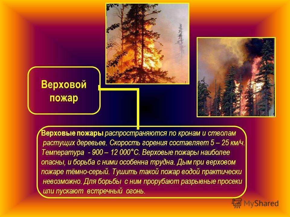 Верховой пожар Верховые пожары распространяются по кронам и стволам растущих деревьев. Скорость горения составляет 5 – 25 км/ч. Температура - 900 – 12 000°С. Верховые пожары наиболее опасны, и борьба с ними особенна трудна. Дым при верховом пожаре тё