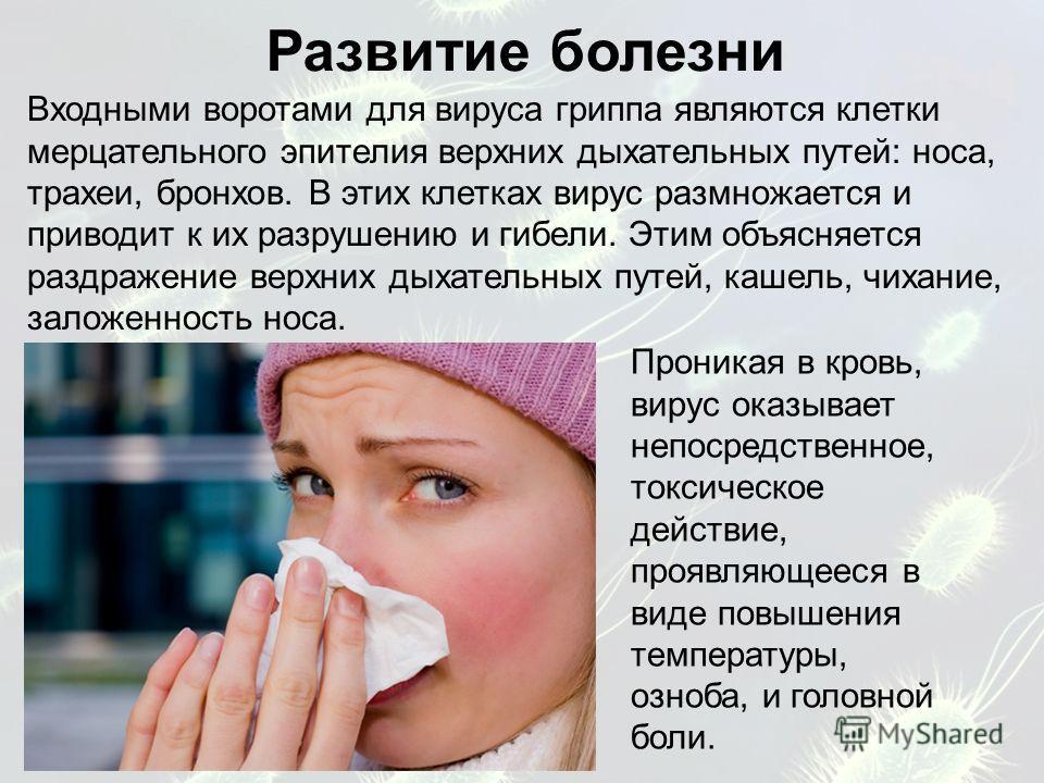 Входными воротами для вируса гриппа являются клетки мерцательного эпителия верхних дыхательных путей: носа, трахеи, бронхов. В этих клетках вирус размножается и приводит к их разрушению и гибели. Этим объясняется раздражение верхних дыхательных путей