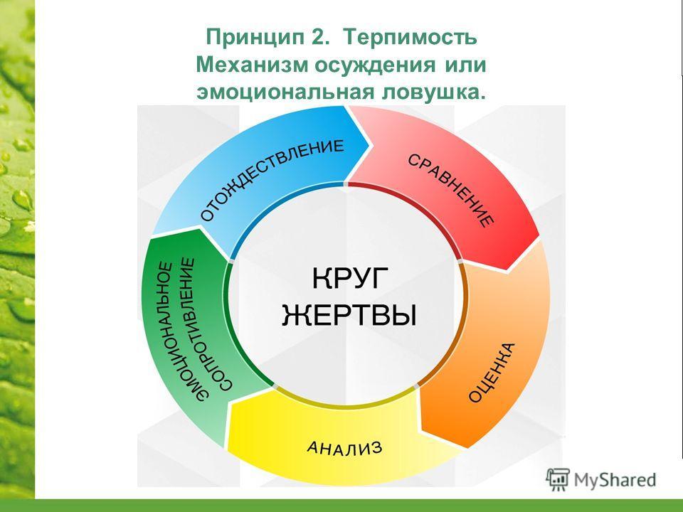 Принцип 2. Терпимость Механизм осуждения или эмоциональная ловушка.