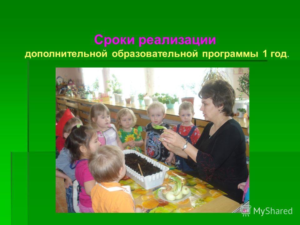Сроки реализации дополнительной образовательной программы 1 год.