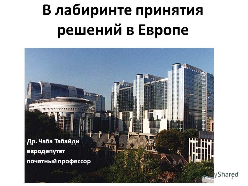 В лабиринте принятия решений в Европе 1 Др. Чаба Табайди евродепутат почетный профессор