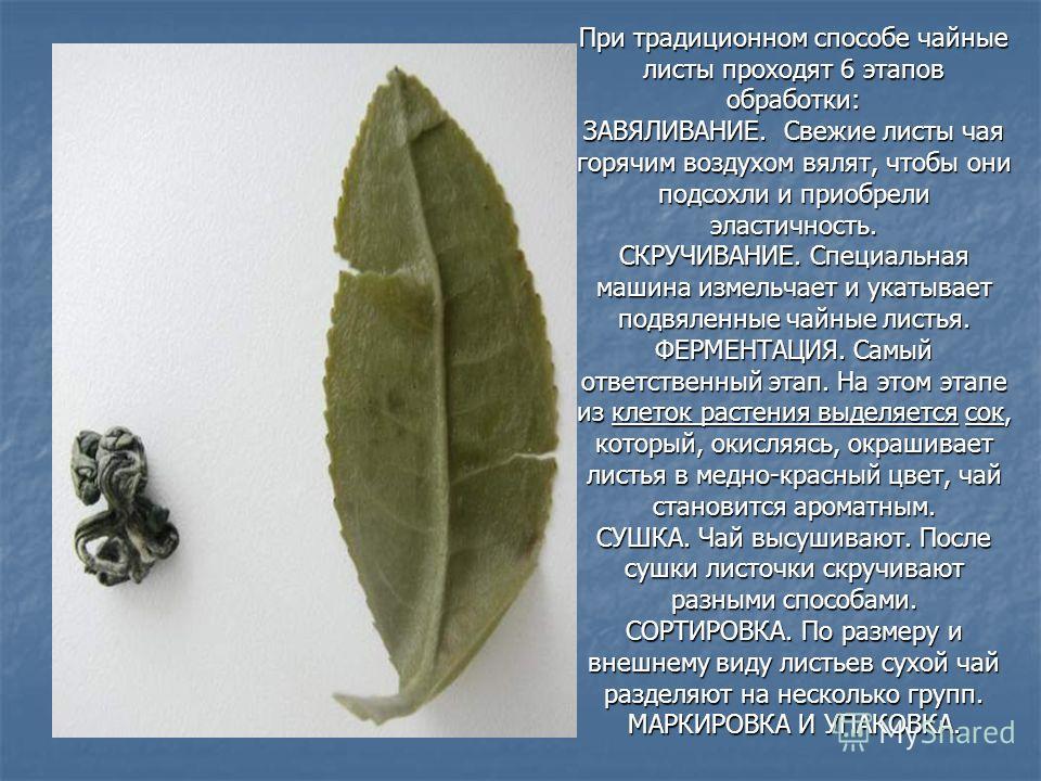 При традиционном способе чайные листы проходят 6 этапов обработки: ЗАВЯЛИВАНИЕ. Свежие листы чая горячим воздухом вялят, чтобы они подсохли и приобрели эластичность. СКРУЧИВАНИЕ. Специальная машина измельчает и укатывает подвяленные чайные листья. ФЕ
