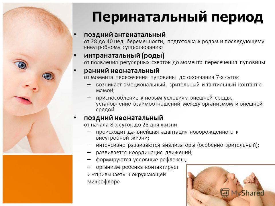 Подготовка к беременности и к родам в