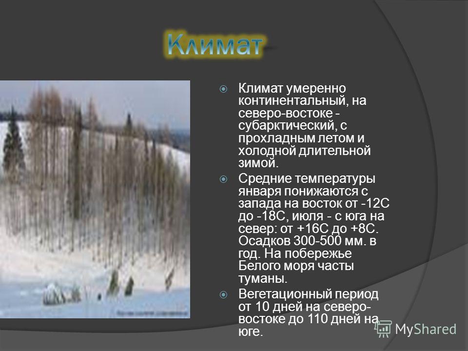 Климат умеренно континентальный, на северо-востоке - субарктический, с прохладным летом и холодной длительной зимой. Средние температуры января понижаются с запада на восток от -12С до -18С, июля - с юга на север: от +16С до +8С. Осадков 300-500 мм.