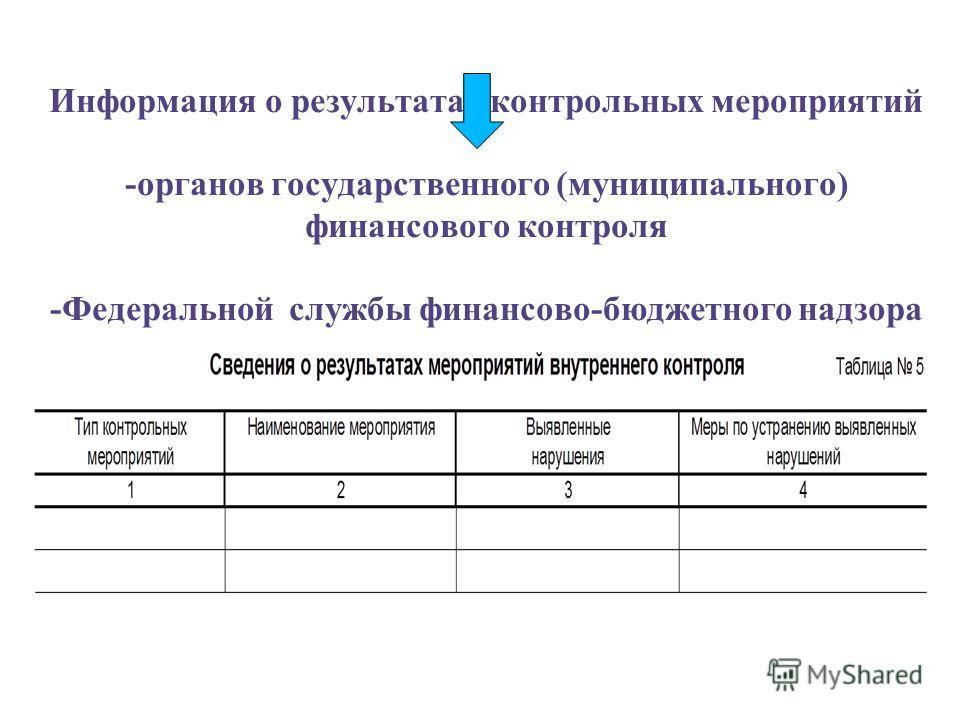 Информация о результатах контрольных мероприятий -органов государственного (муниципального) финансового контроля -Федеральной службы финансово-бюджетного надзора