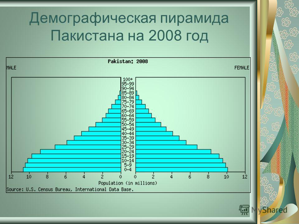Демографическая пирамида Пакистана на 2008 год