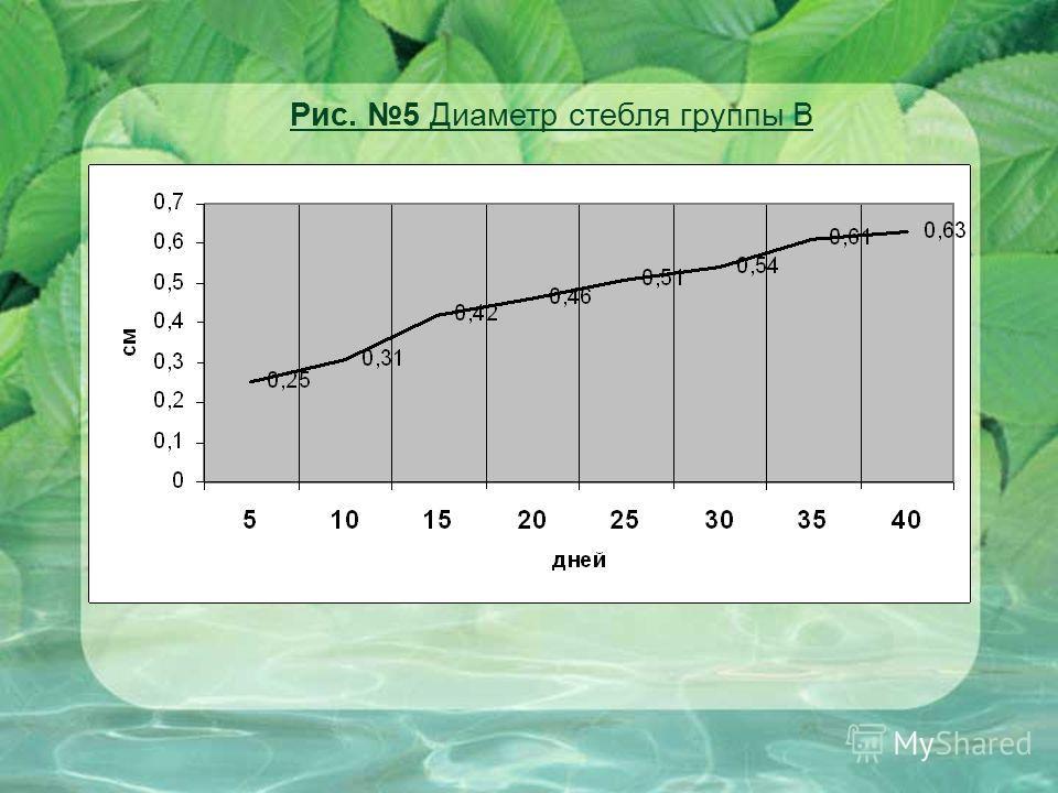 Рис. 5 Диаметр стебля группы В