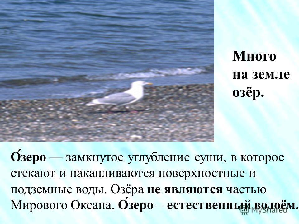 Волго – Донской канал. Шлюзы. Канал – искусственный водоём.
