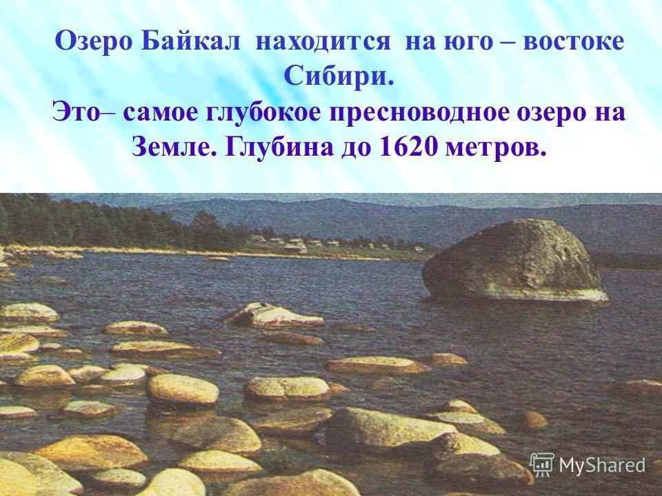 Расположено на высоте 456 метров и окружено горами. В него впадает 336 рек ( в том числе Селенга, Баргузин, Верхняя Ангара). Вытекает река Ангара. В озере водятся : байкальская нерпа, живородящая рыба голомянка, омуль, хариус. Северо – восточная част