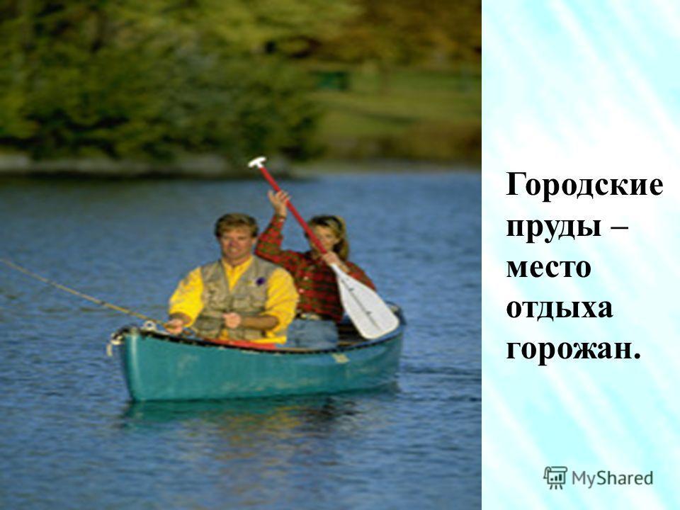 Пруд - искусственное озеро. В сельской местности пруды делают для разведения рыб.