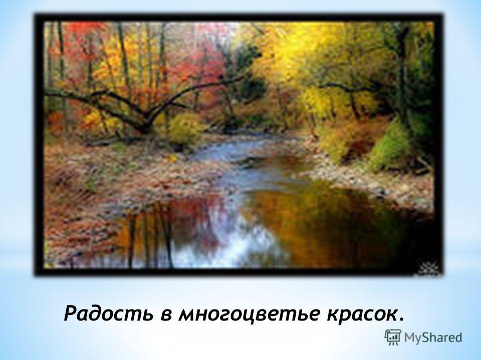Радость в многоцветье красок.