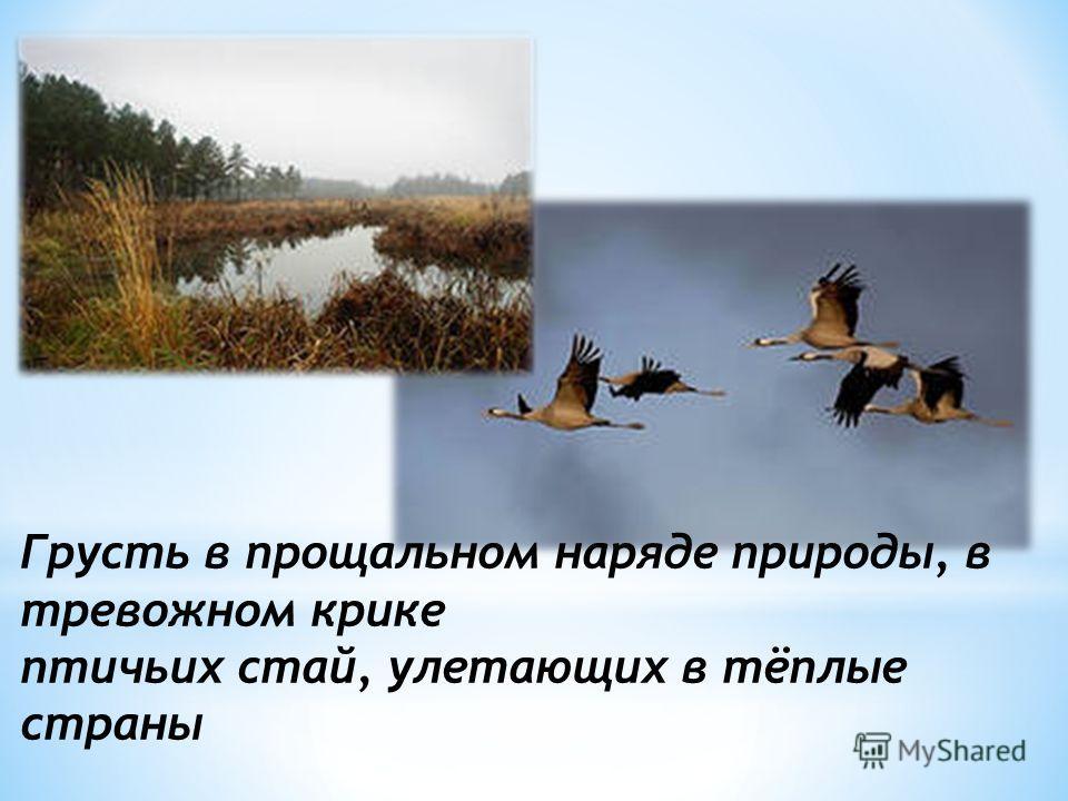 Грусть в прощальном наряде природы, в тревожном крике птичьих стай, улетающих в тёплые страны