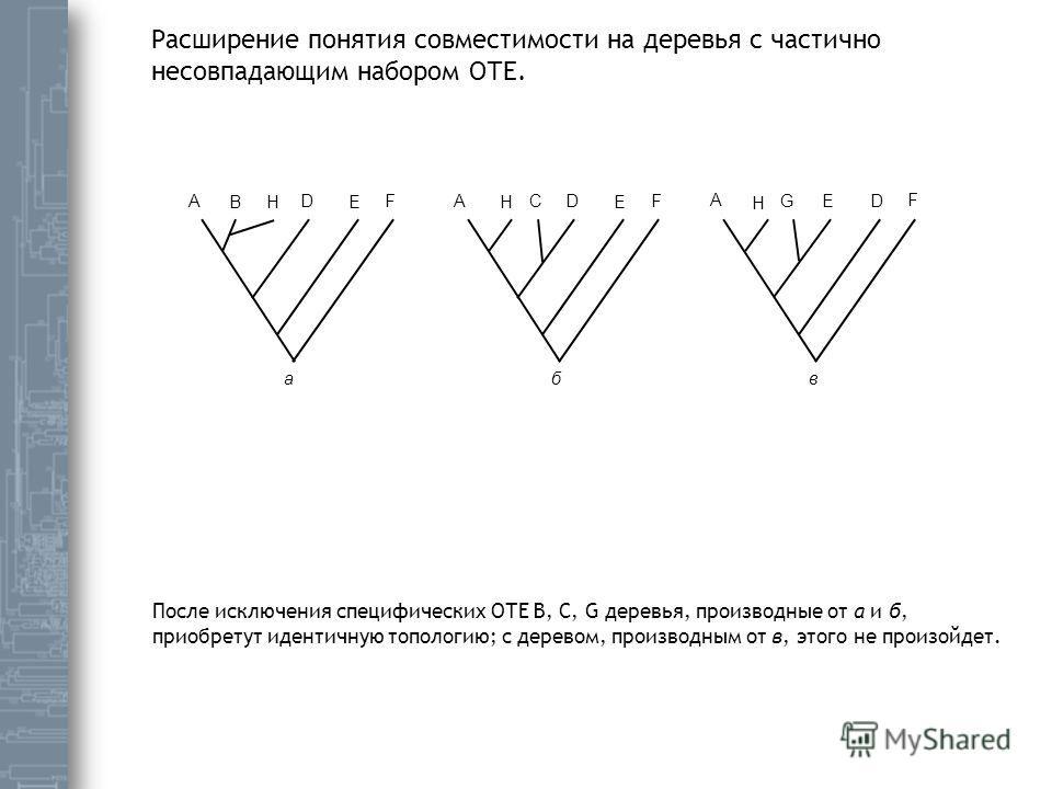 A B D E FAC D E F A E D F а бв G H H H Расширение понятия совместимости на деревья с частично несовпадающим набором ОТЕ. После исключения специфических ОТЕ B, C, G деревья, производные от а и б, приобретут идентичную топологию; с деревом, производным