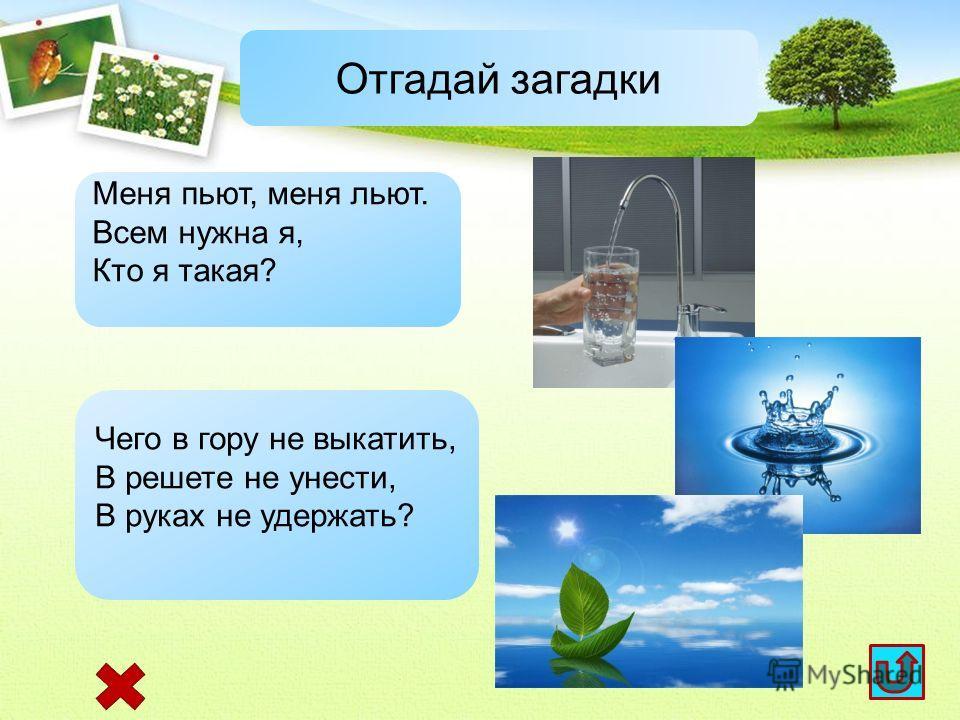загадки картинки о природе