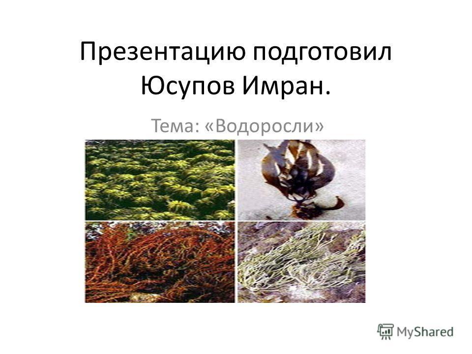 Презентацию подготовил Юсупов Имран. Тема: «Водоросли»