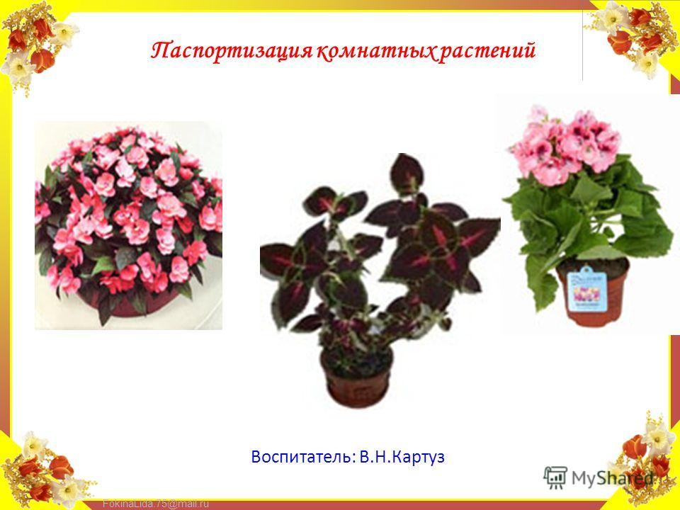 FokinaLida.75@mail.ru Воспитатель: В.Н.Картуз Паспортизация комнатных растений