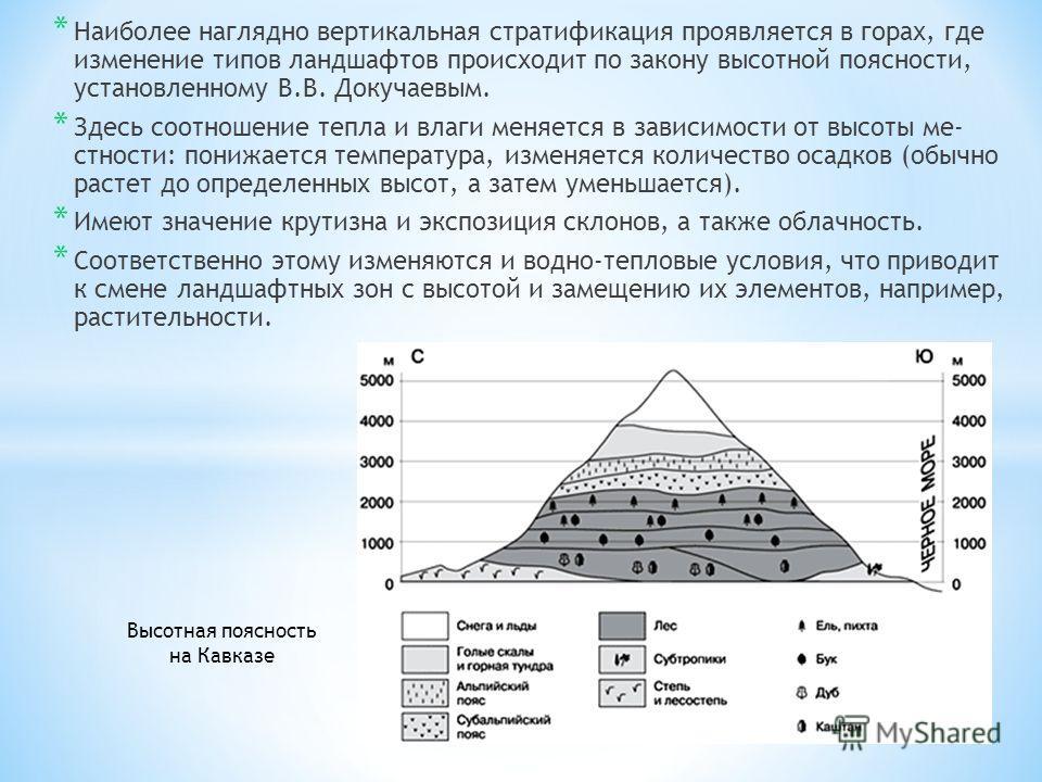 * Наиболее наглядно вертикальная стратификация проявляется в горах, где изменение типов ландшафтов происходит по закону высотной поясности, установленному В.В. Докучаевым. * Здесь соотношение тепла и влаги меняется в зависимости от высоты ме стности