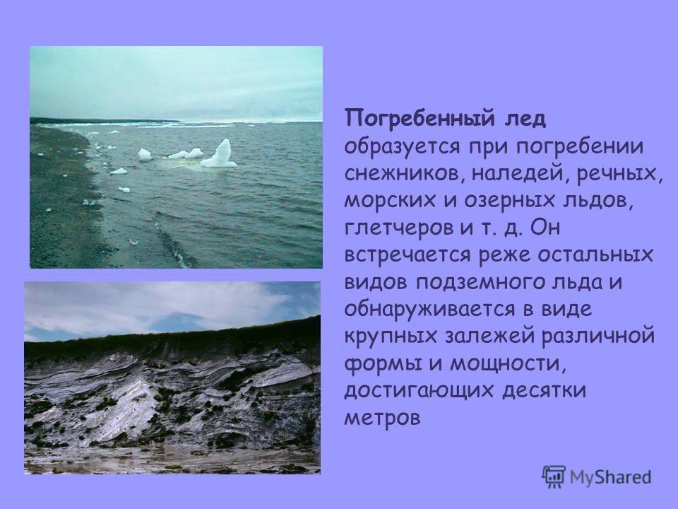 Погребенный лед образуется при погребении снежников, наледей, речных, морских и озерных льдов, глетчеров и т. д. Он встречается реже остальных видов подземного льда и обнаруживается в виде крупных залежей различной формы и мощности, достигающих десят
