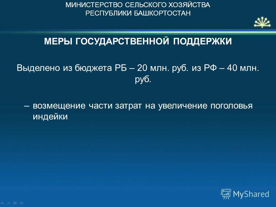 МЕРЫ ГОСУДАРСТВЕННОЙ ПОДДЕРЖКИ Выделено из бюджета РБ – 20 млн. руб. из РФ – 40 млн. руб. –возмещение части затрат на увеличение поголовья индейки МИНИСТЕРСТВО СЕЛЬСКОГО ХОЗЯЙСТВА РЕСПУБЛИКИ БАШКОРТОСТАН