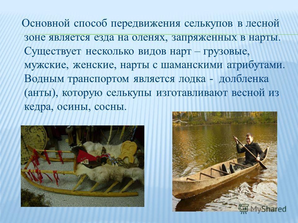 Основной способ передвижения селькупов в лесной зоне является езда на оленях, запряженных в нарты. Существует несколько видов нарт – грузовые, мужские, женские, нарты с шаманскими атрибутами. Водным транспортом является лодка - долбленка (анты), кото