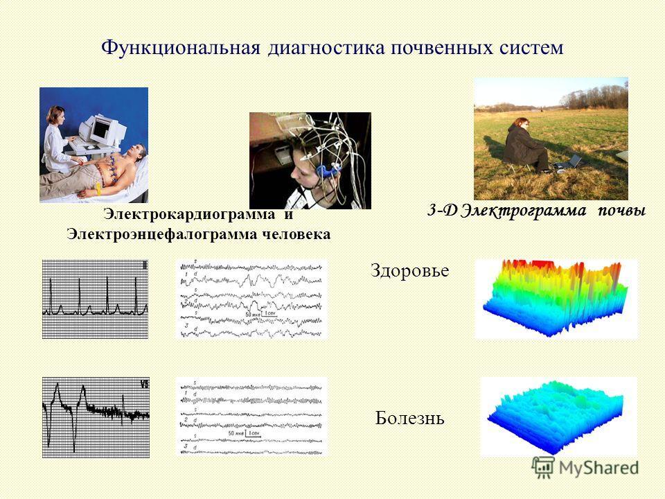 Здоровье Болезнь Функциональная диагностика почвенных систем Электрокардиограмма и Электроэнцефалограмма человека 3-D Электрограмма почвы