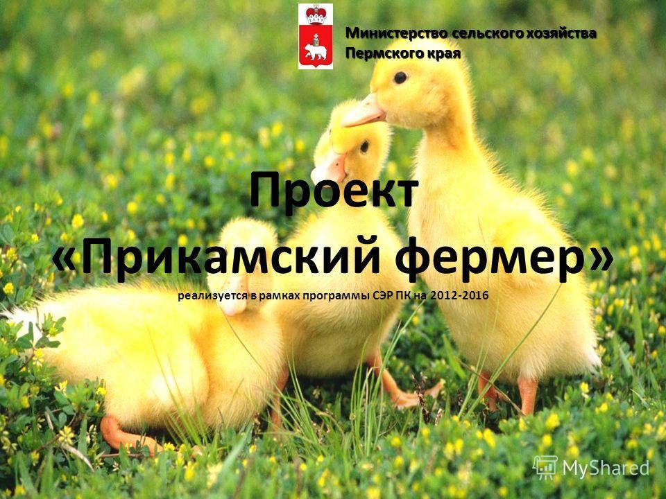 Проект «Прикамский фермер» реализуется в рамках программы СЭР ПК на 2012-2016 Министерство сельского хозяйства Пермского края