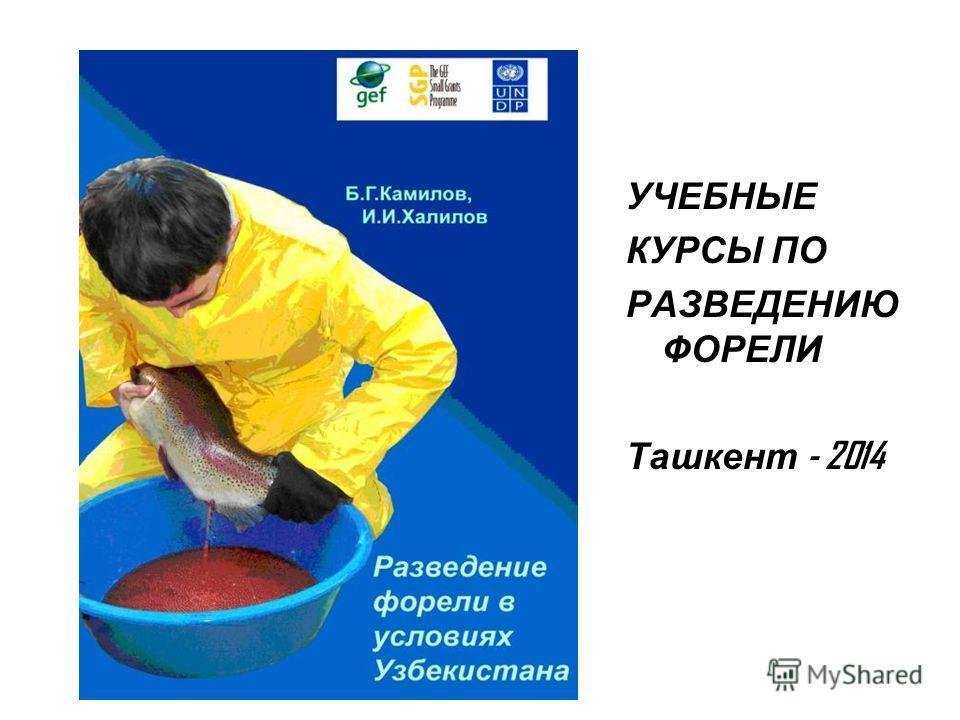 УЧЕБНЫЕ КУРСЫ ПО РАЗВЕДЕНИЮ ФОРЕЛИ Ташкент - 2014