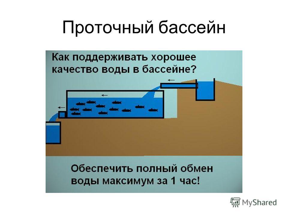 Проточный бассейн