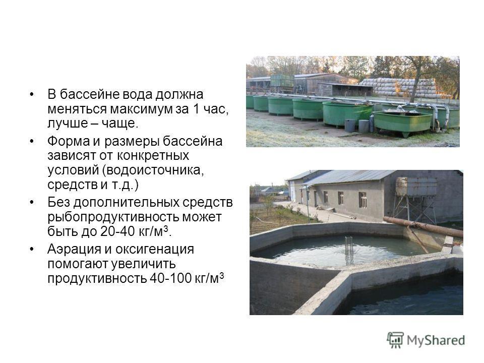 В бассейне вода должна меняться максимум за 1 час, лучше – чаще. Форма и размеры бассейна зависят от конкретных условий (водоисточника, средств и т.д.) Без дополнительных средств рыбопродуктивность может быть до 20-40 кг/м 3. Аэрация и оксигенация по